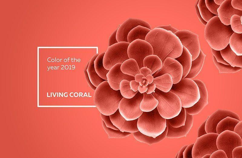 pantone color del año 2019 living coral la esquinita del scrap tienda online scrapbooking scrapbook papeles blocs colecciones sellos stickers die cuts